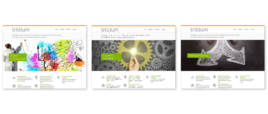 Three screen grab examples of the Trillium website homepage showing brand elements, logo, color palette, brand illustration, and brand message.
